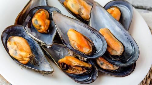 blue ocean mussels half-shell
