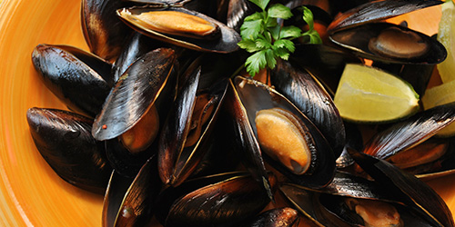 blue ocean mussels frozen full-shell