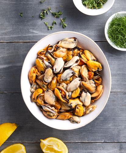 blue-ocean-mussels-mussel-meat