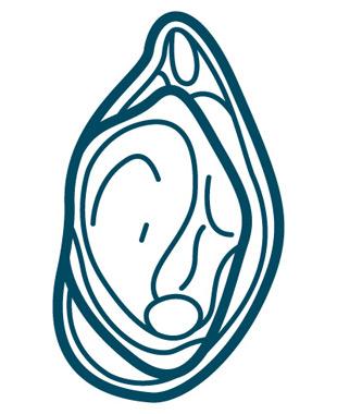 blue-ocean-mussels-mussel-nutrition-0